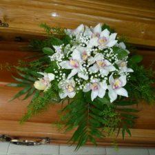 kwiaty009