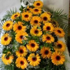kwiaty026