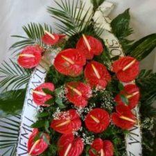 kwiaty030