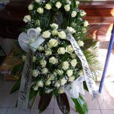 kwiaty061