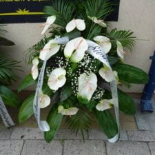 kwiaty063
